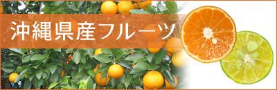 沖縄県産フルーツ