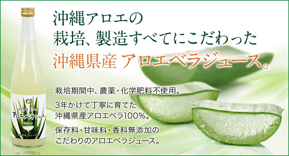 沖縄県産 アロエベラジュース