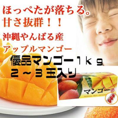 沖縄県産マンゴー産地直送! 沖縄県産マンゴー(優品)1kg